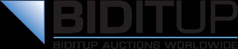logo biditup