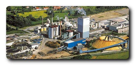Burgo Ardennes pulp mill, Burgo Group