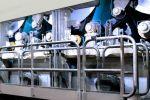 Toscotec finalizes a drying section rebuild at Cartiera San Giorgio, Italy.