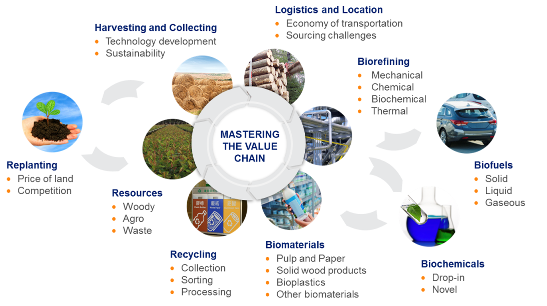 Value chain pulp and paper industry